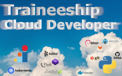 Traineeship Cloud Developer